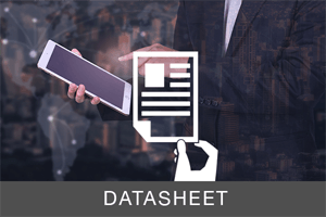 Datasheet - Continuous Security Assessment and Remediation Platform